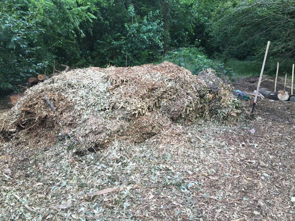 We move a load of this mulch weekly to mitigate flooding and potential drought conditions. Water absorption and retention simultaneously!