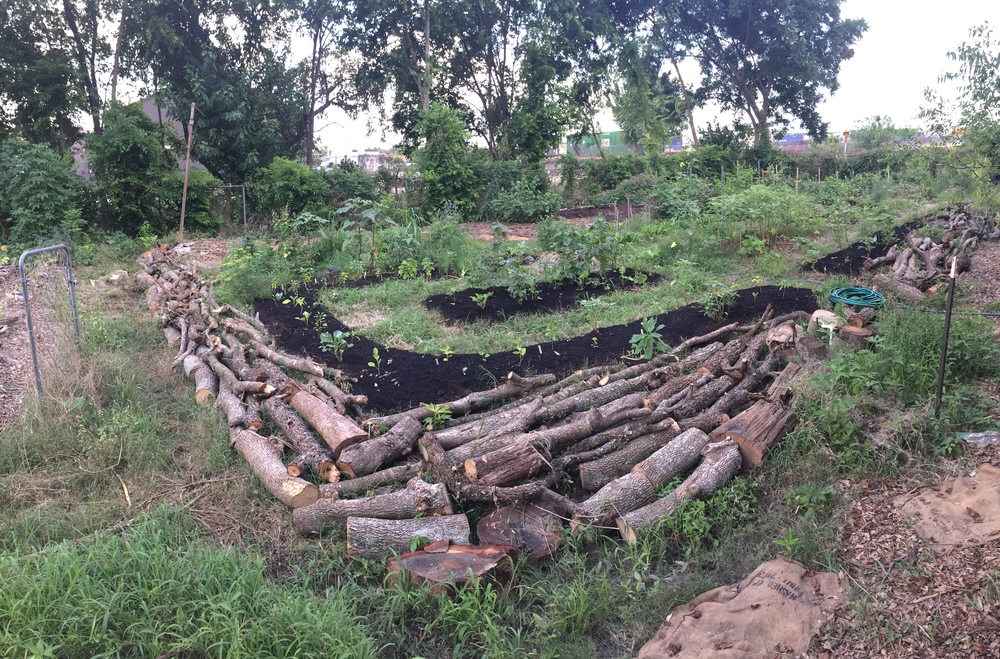 The logs we receive from the same mulch drops are used to continue habitat berms for beneficial creatures as well as hugelkultur beds.