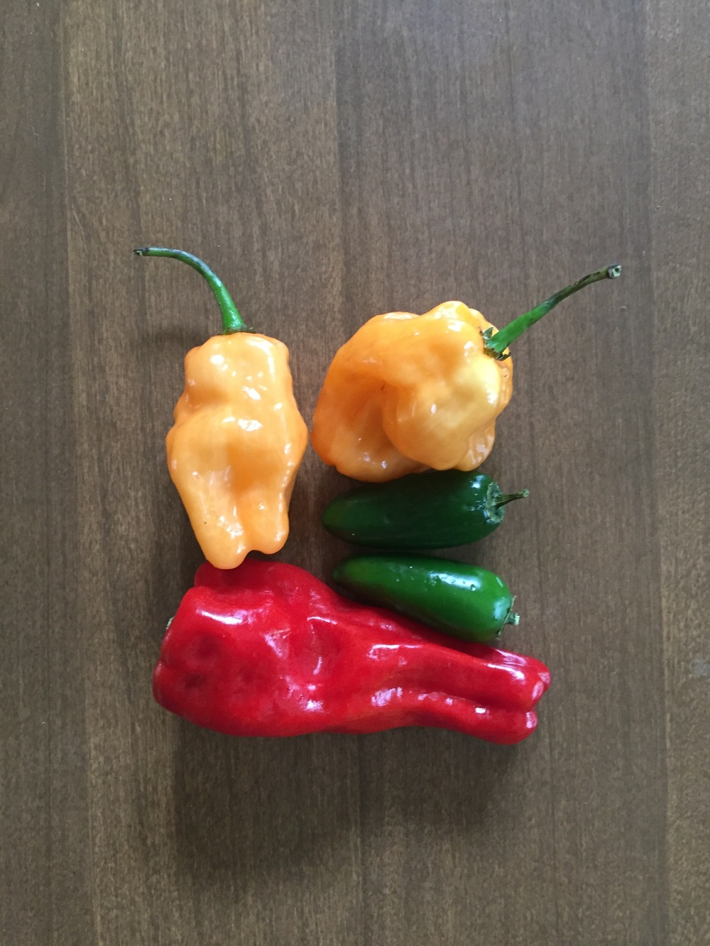 Chile Peppers (3)