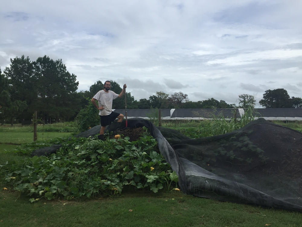 Farmer Michael atop on of our compost piles being readied to amend our first production beds in the Hopscotch Garden! (The summer squash volunteer just loved it apparently.)