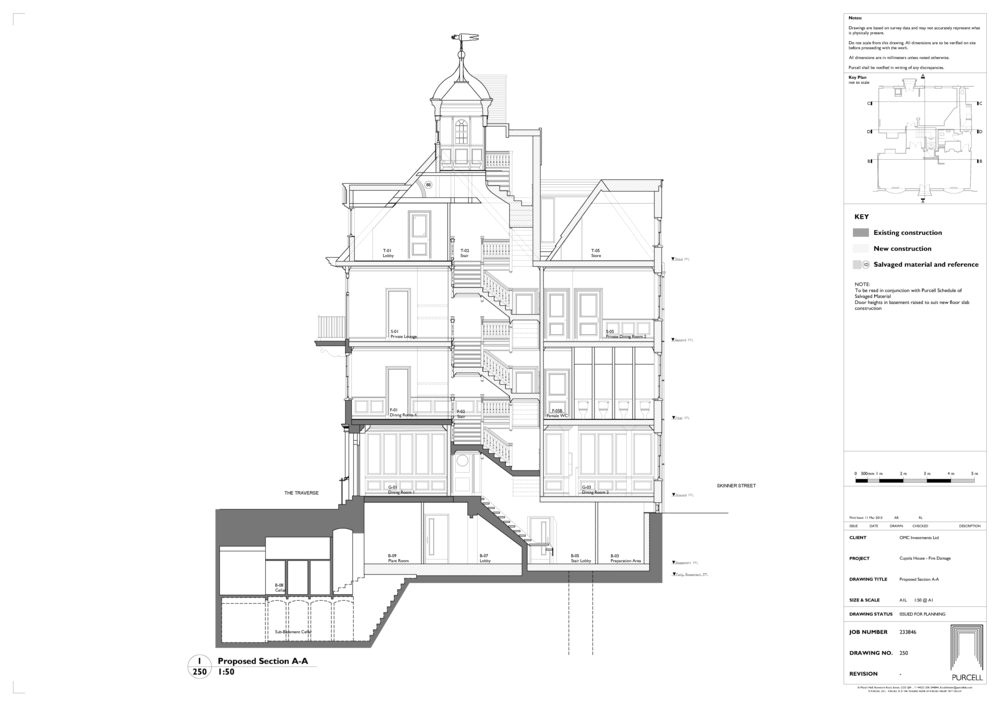 CUPOLA HOUSE - SECTION THROUGH.png