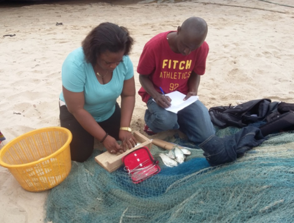 Evans and field assistant measuring sardinella