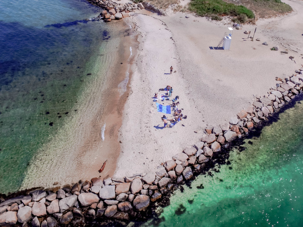 Drone shot of the lab group during the inaugural Humphries Lab retreat in Martha's Vineyard, MA.