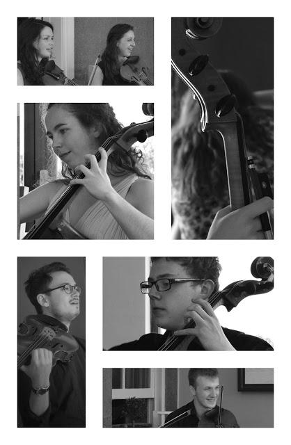 Ortús Musician photography by OneCuriousChip