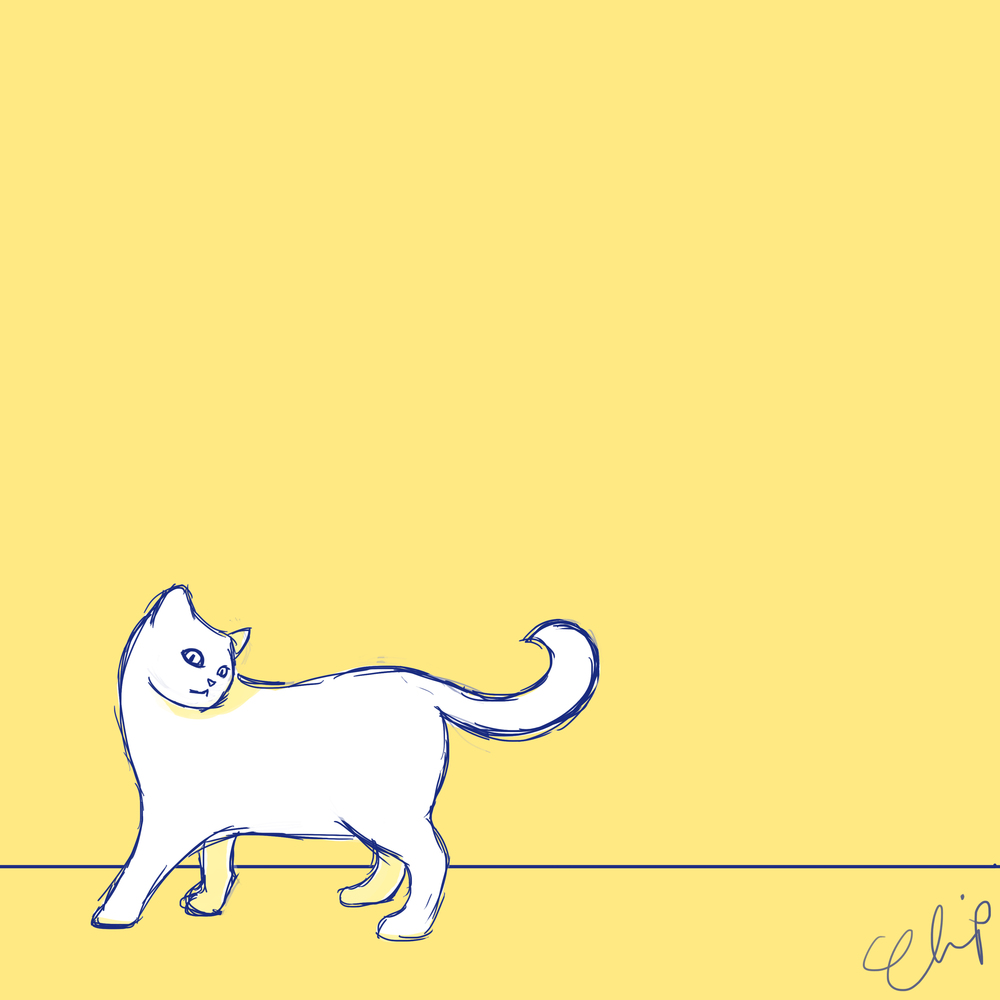 Cats - 1 x 3.jpg