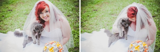 cat-photobomb-bridal-portraits-photo.jpg