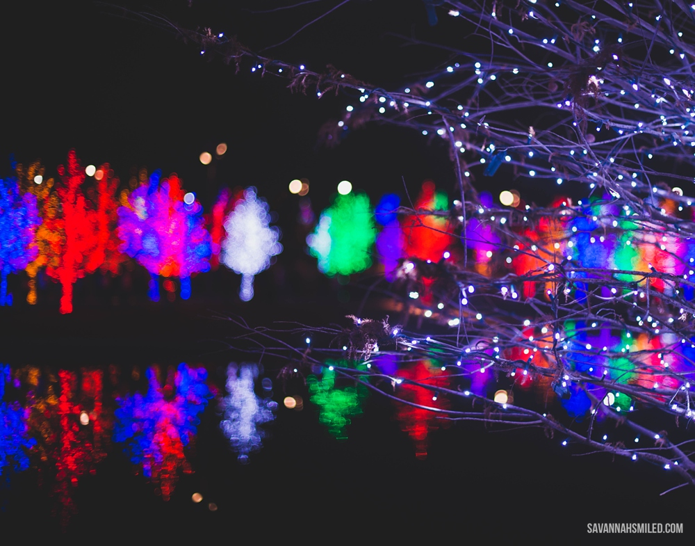 addison-vitruvian-park-dallas-christmas-lights-8.jpg