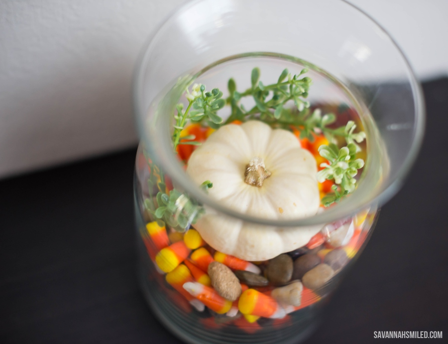 simple-fall-autumn-terrarium-pumpkin-6.jpg