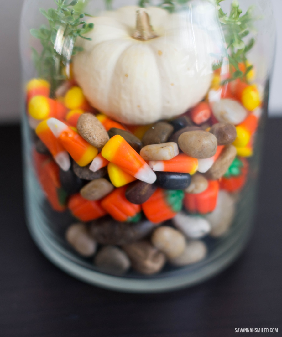 simple-fall-autumn-terrarium-pumpkin-4.jpg
