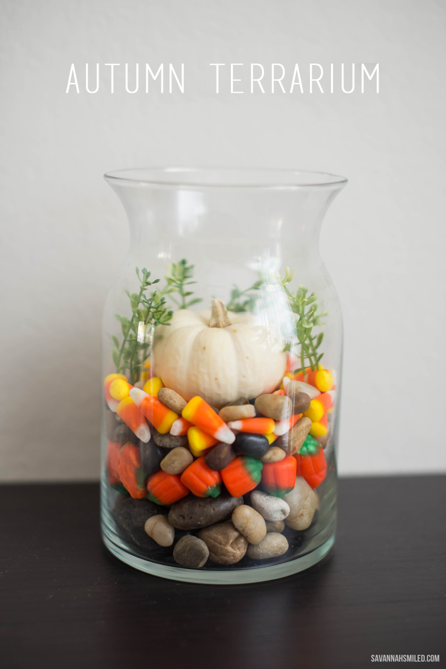 simple-fall-autumn-terrarium-pumpkin-2_edited-1.png