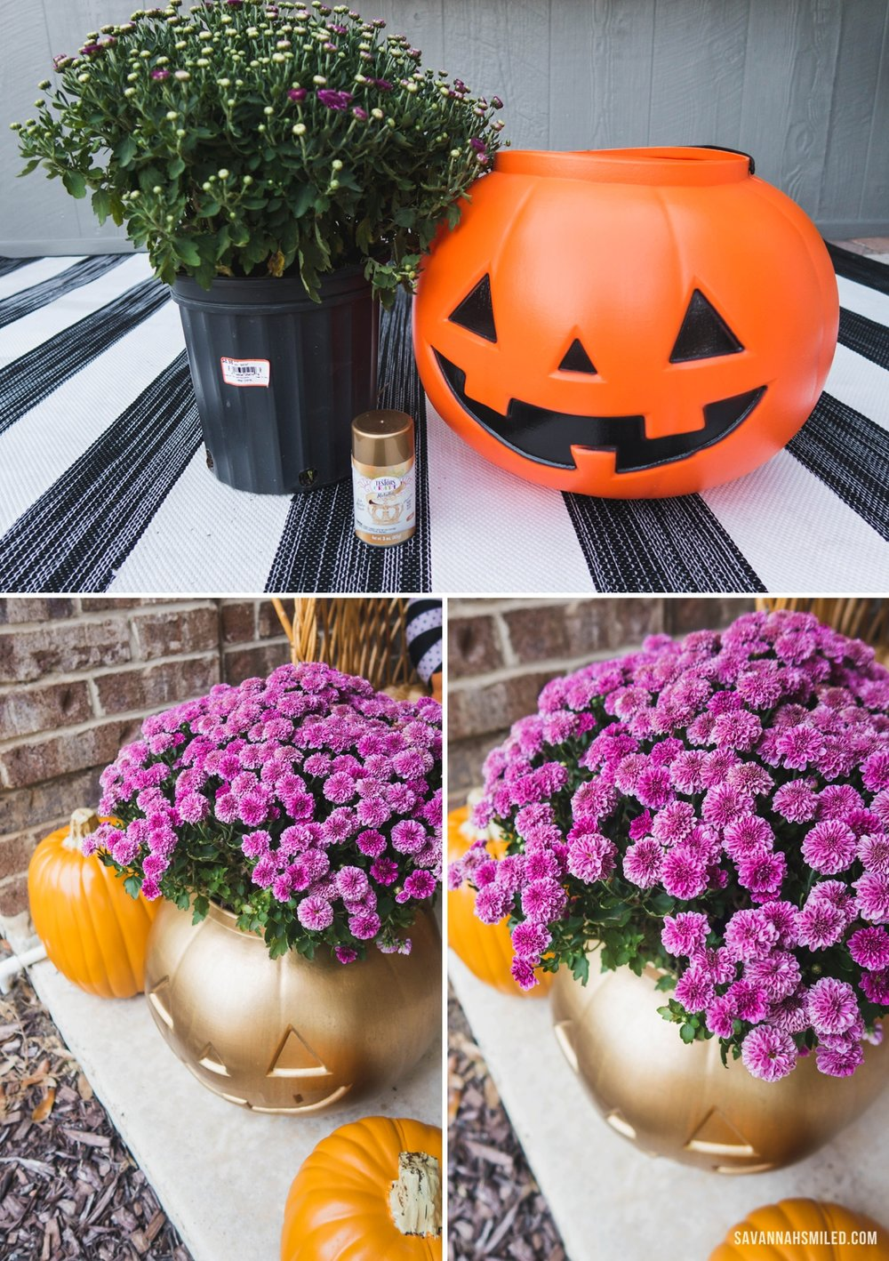 pumpkin-porch-mums-2.jpg