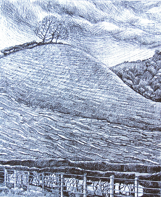The Trees On The Hill -  Ar Y Bryn Roedd Y Pren     100mm x 123mm, ink -  inc     Price -   Pris   £295