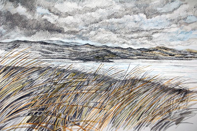 Scrambling to the shore -  Sgrialu Trwy'r Gwellt   Watercolour –  Dyfrlliw  (380 mm x 550 mm) £TBC