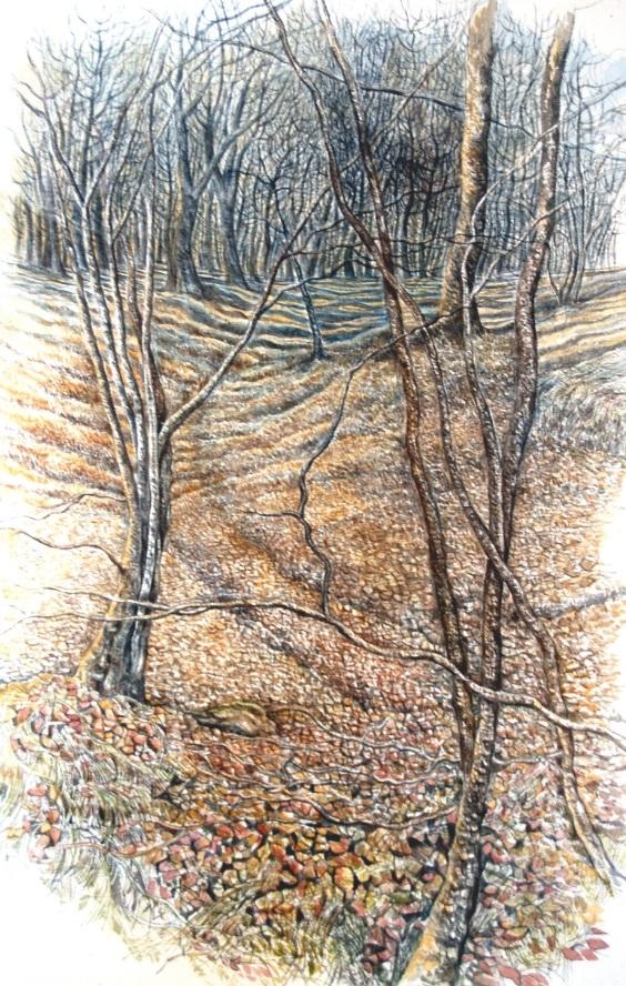 Light and Shadows - Golau a Chysgodion   watercolour - dyfrlliw  (380 mm x 550 mm)    £1,950