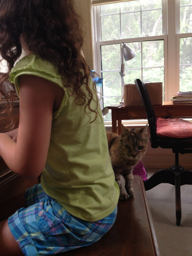 "Lou-Lou Kitty ""helps"" with piano lessons"