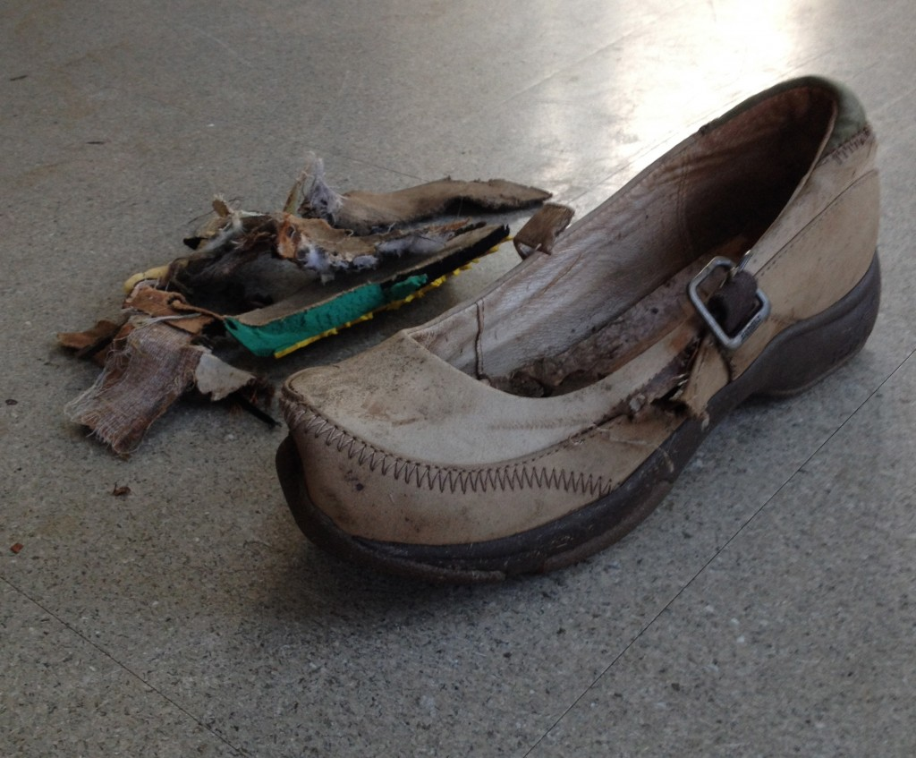 Rest in Peace, Dead Danskos.