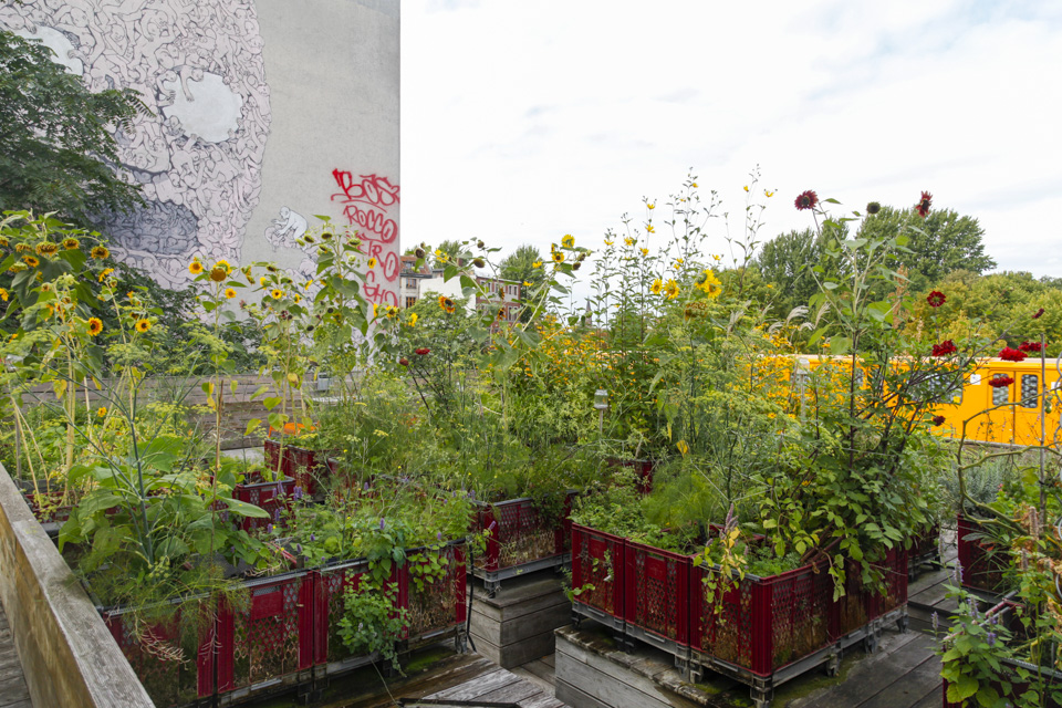 Diffferent agency rooftop garden in Kreuzberg Berlin