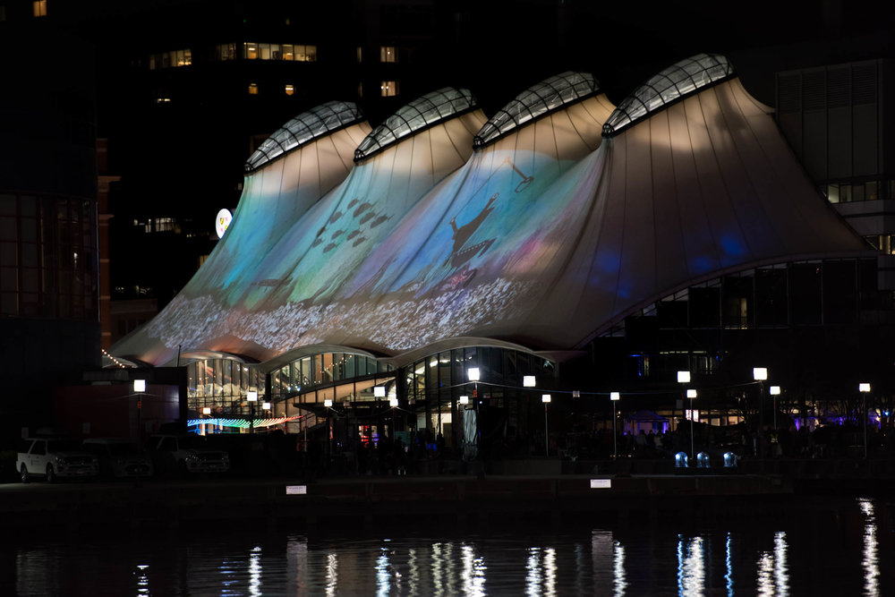 View of the projection mapping piece  Projected Aquaculture  at the Columbus Center in Baltimore, MD for Light City 2016.
