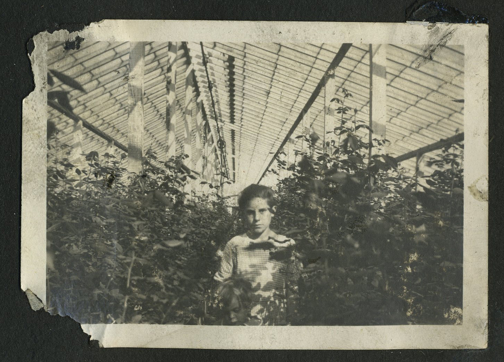 Young Boy in Greenhouse.jpg