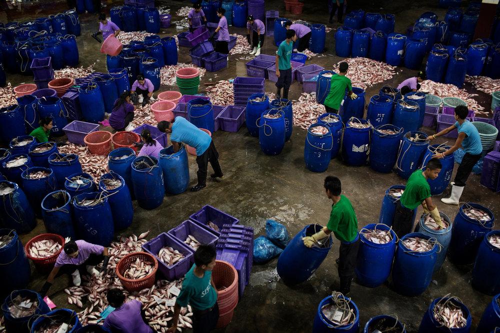 Dockworkers in Thailand