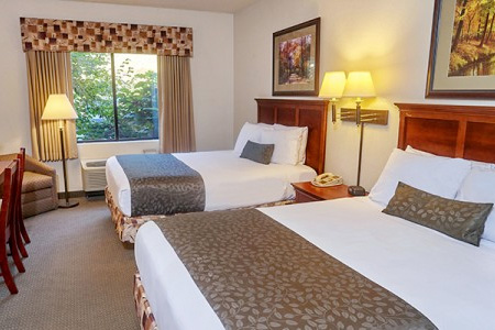 DELUXE ROOM   Mountain Laurel | $92/night  Sleeps up to 4 people
