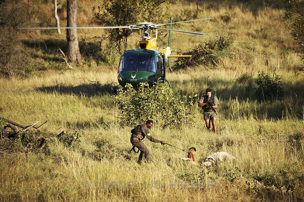 South African wildlife park rangers investigating a poached rhino on 04/08/2013 in Kruger National Park, South Africa, bordering Mozambique. Image courtesy of Cornel Van Heerden.