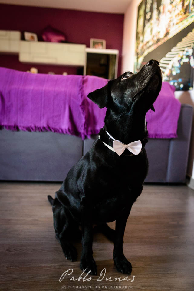 boda-can-boixeres-004