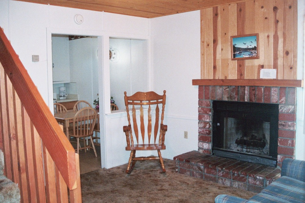 Cabin 14 Fireplace.JPG