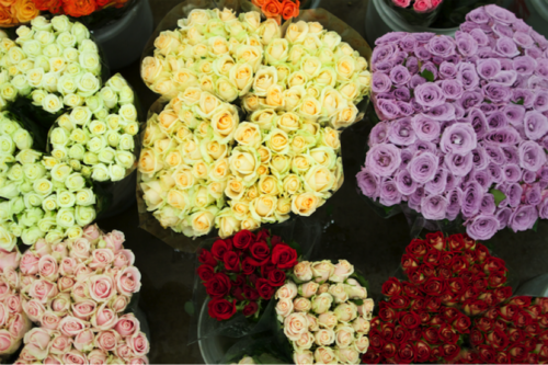 Susies Wholesale Flowers Southern California Flower Market