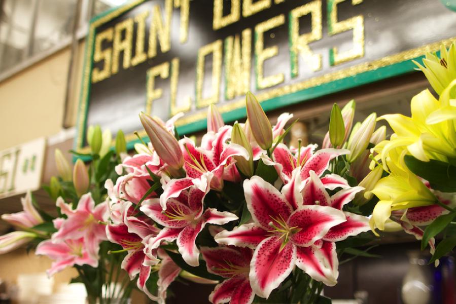 _30_Saint-Germain-Flowers_03.png