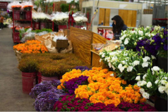 _41_West-Flower-Growers_01.png