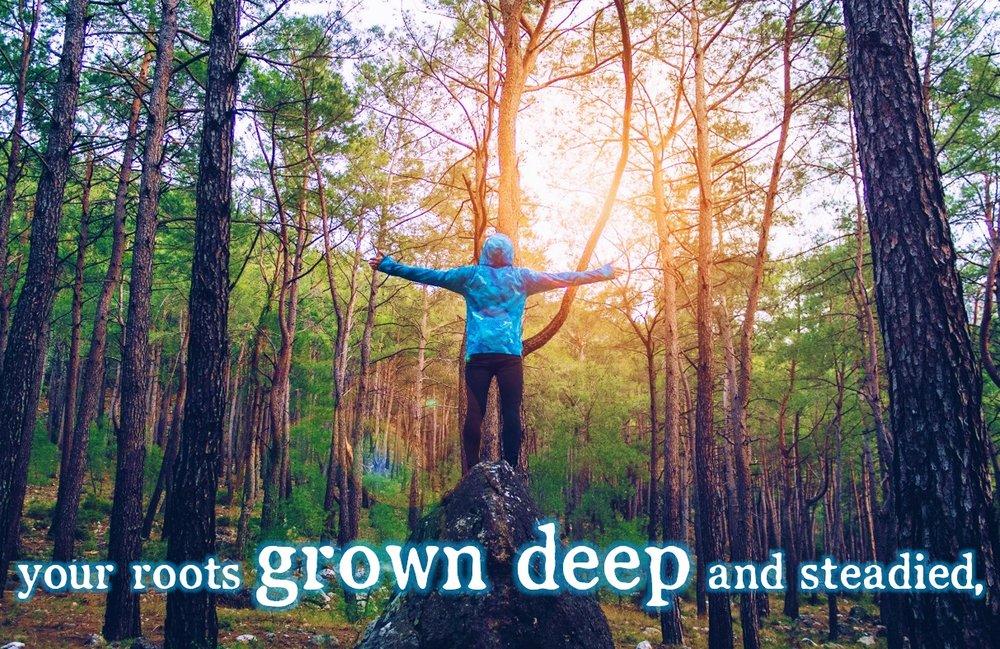 roots1.jpg