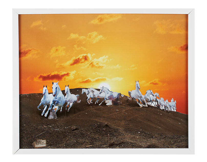 ceremonie_shamanic_horses