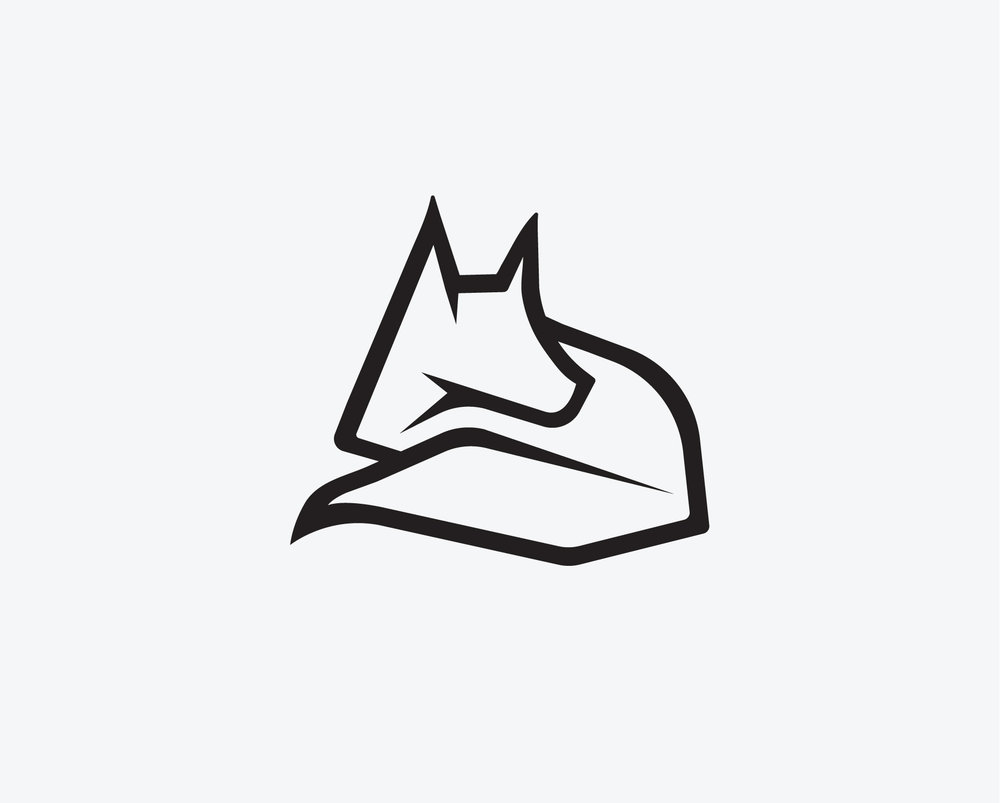 Arctic Fox (clothing) Brand Concept