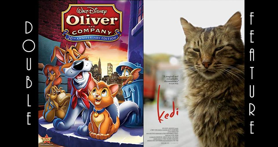 National Kitten Day Double Feature Oliver Companykedi Casa