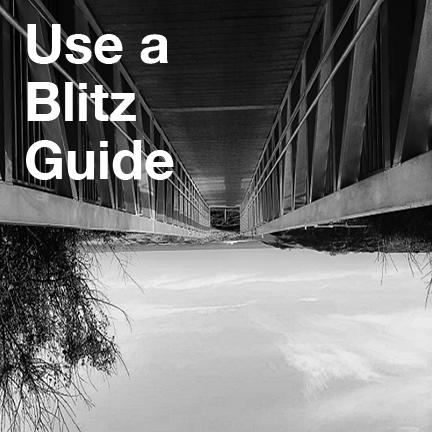Use a Blitz Guide