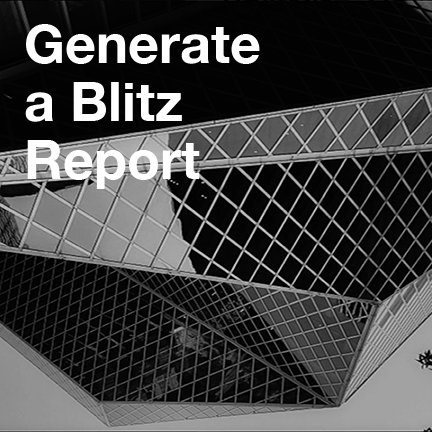 Generate a Blitz   report