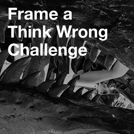 Frame a Think Wrong Challenge