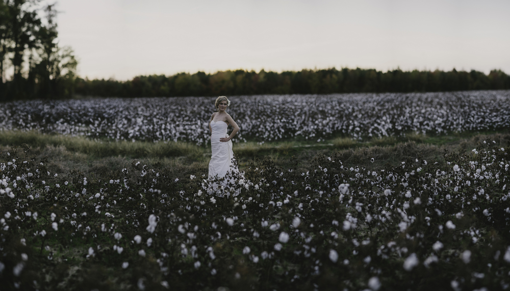 Greenville cotton field panorama bridal session
