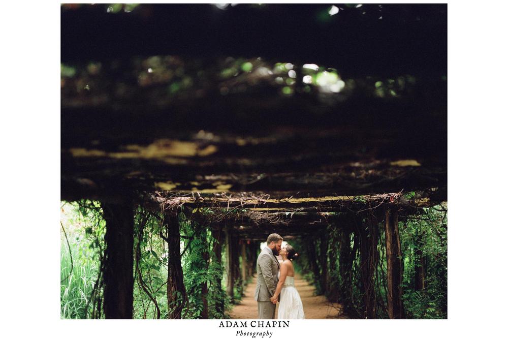 coker arboretum wedding photography