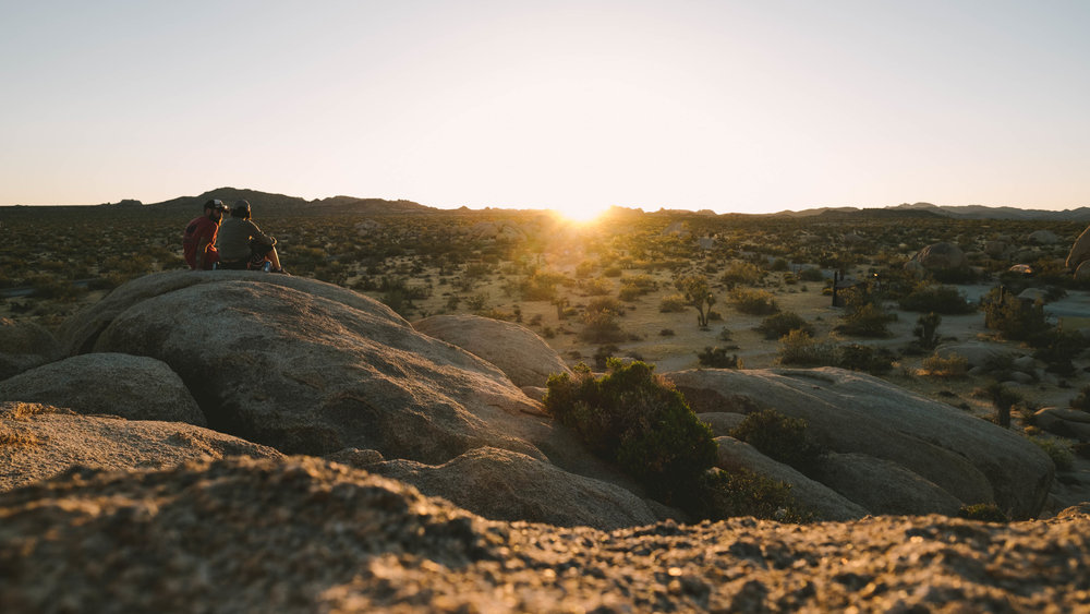 joshua-tree-engagement-photo.jpg