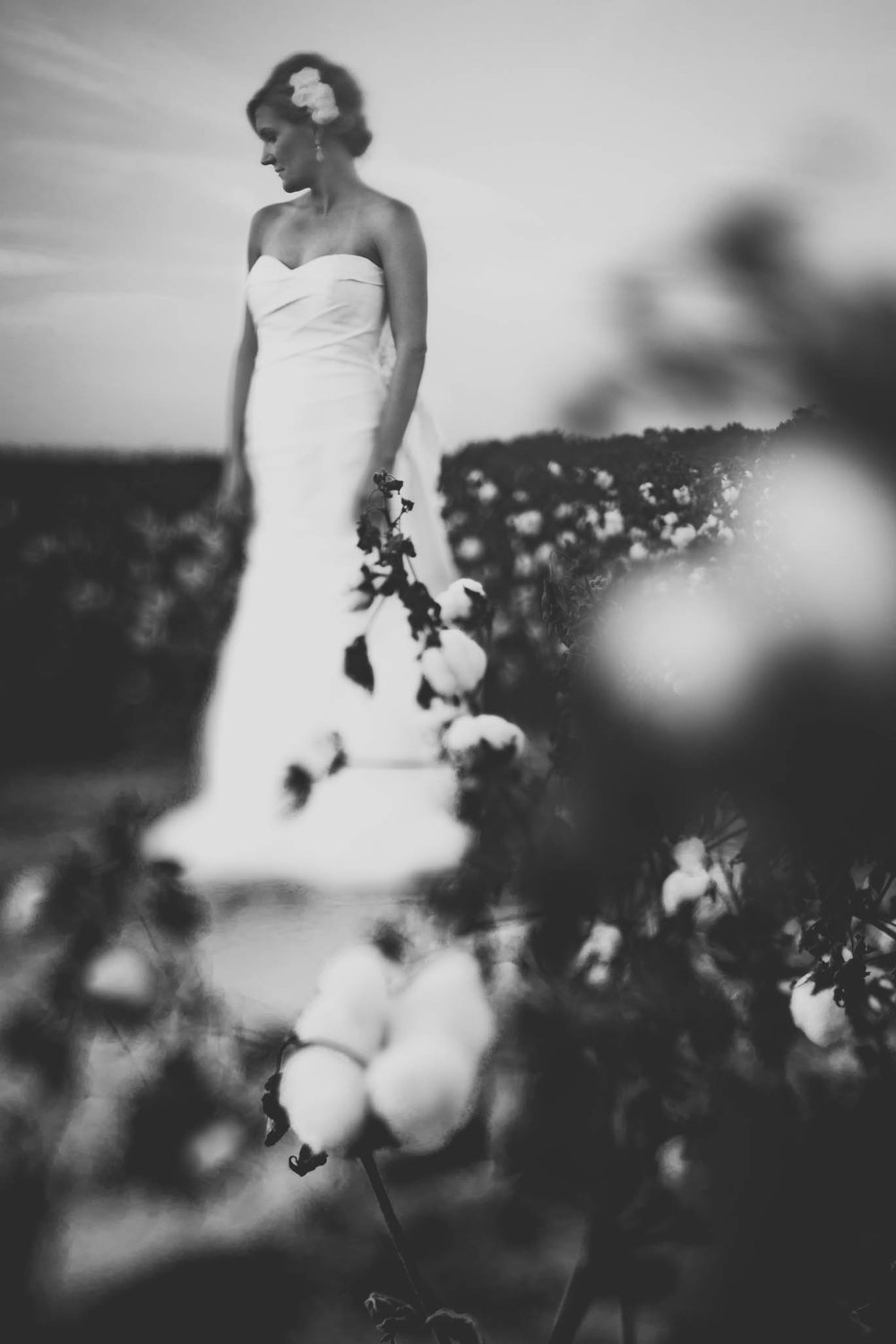bride looking at the cotton during bridal session