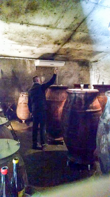 """Even though there was devastation outside, Fred Niger of Domaine l'Eclu spent nearly three hours with me tasting and talking about winemaking philosophies. Here he's dipping into one of his custom made amphora to grab us a taste of the future. It was great to hear his take on """"natural wine""""."""