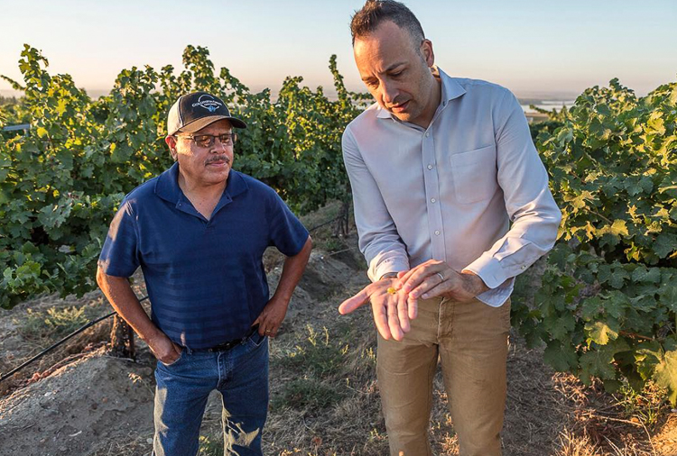 Columbia Crest winemaker Juan Muñoz Oca talks viticulture with vineyard manager Juan Uribe