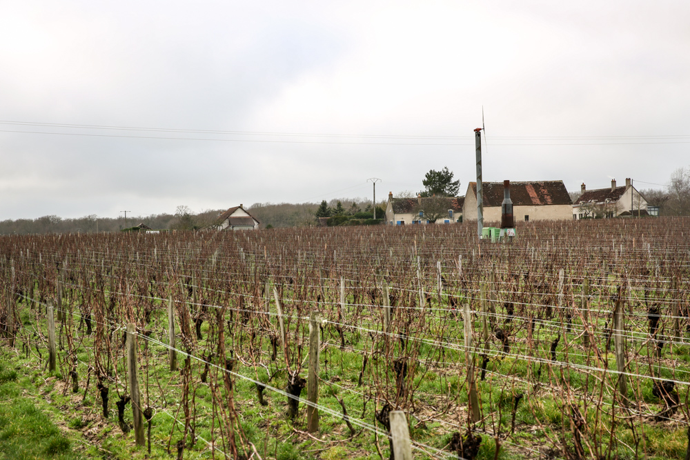 A wind machine and heater stationed in a Touraine vineyard to fight against the ever-threatening Loire Valley frost.