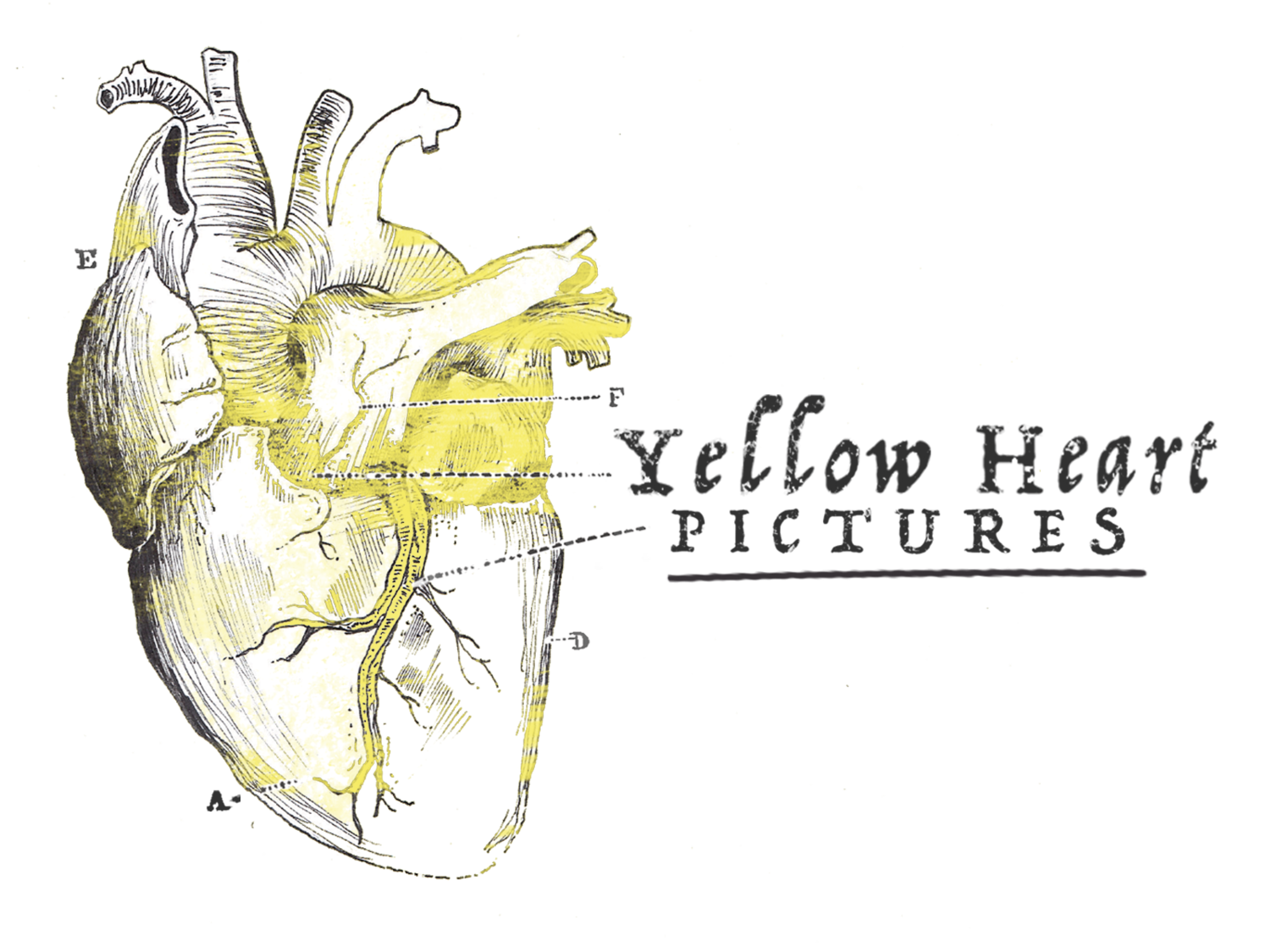 Yellow Heart Pictures