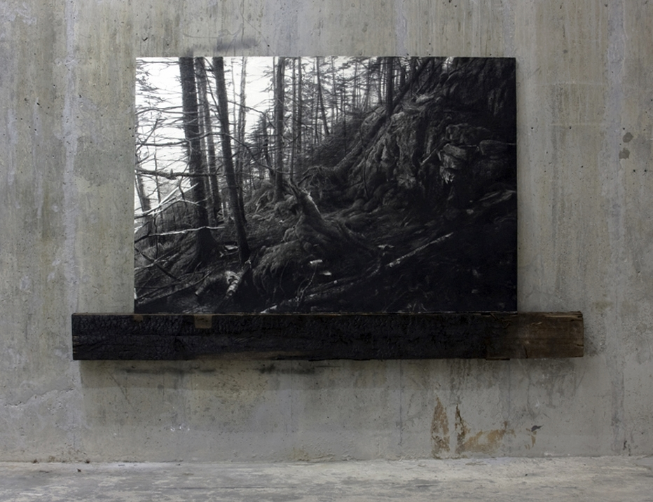 "Sprucehead, charcoal paper charred wood, 54""X96"" 2011"