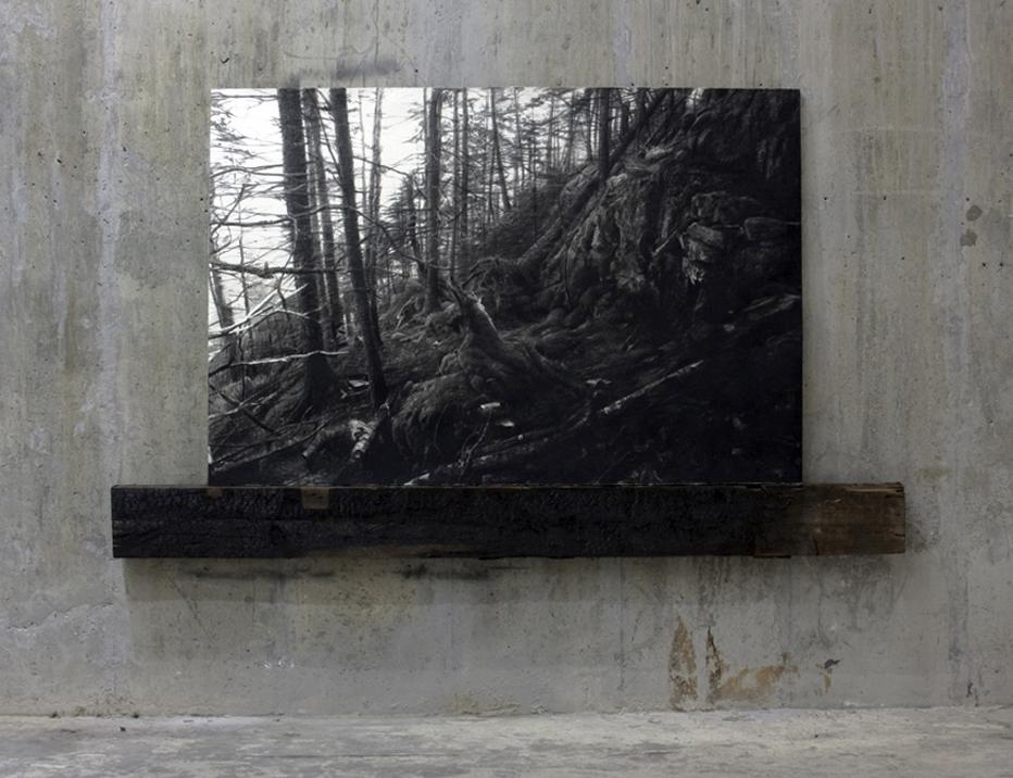 "Sprucehead, charcoal paper charred wood, 54""X96"" 2011"