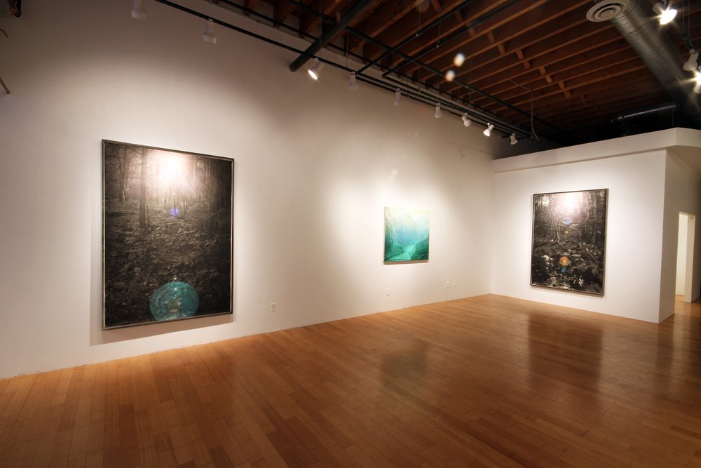 Orgone, David B Smith Gallery 2013
