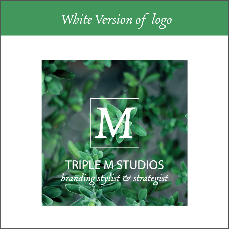 White Version of logo / Watermark - There are times where your logo will need to be on top of images or colored backgrounds. A white version of your logo will be provided in the files I give you in this package deliverables for this reason.